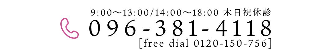 096-381-4118